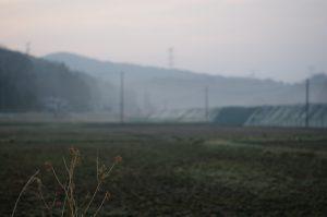 飯舘村の朝