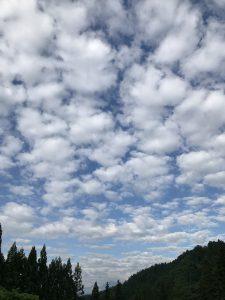空の美術館